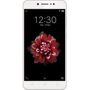 VIVO Y66 Smartphone (Crown Gold, 32 GB)  (3 GB RAM) Certified Refurbished Grade A